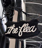 The Smitten Flea Image 1
